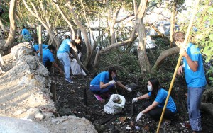 ISAT U administrative staff cleaning the mangrove area at the Iloilo River along Brgy. Laguda LaPaz.